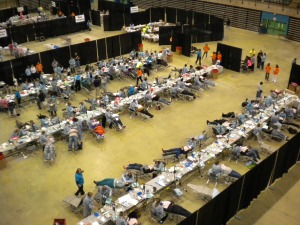 Hundreds of patients are being provided with dental services at the Eastern Shore Mission of Mercy.